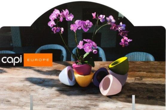 Vazonėlis orchidėjoms SUP